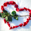 Heart from rose-petals — Stock Photo #10121305