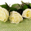 White roses — Stock Photo #10164411