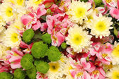 Background from flowers. — Stock Photo