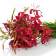 Stock Photo: Bouquet lilies,isolated.