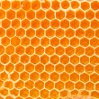 Beer honey in honeycombs. — Stock Photo #9975421
