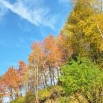 Landscape autumn in mountain — Stock Photo