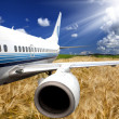 Royalty-Free Stock Photo: The airplane with the wheaten field background.