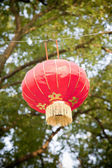 Rode chinese lamp — Stockfoto