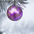 Christmas ornament — Stock Photo #9522257