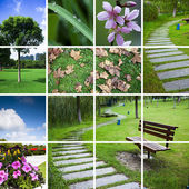 Nature background about the scene of city in garden and park. — Stock Photo