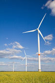 Windmills in crop — Stock Photo