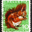 Postage stamp Switzerland 1966 Red Squirrel, Sciurus Vulgaris - Stok fotoğraf