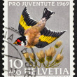 Postage stamp Switzerland 1969 European Goldfinch, Carduelis Car - ストック写真