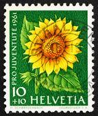 Postage stamp Switzerland 1961 Sunflower, Helianthus Annuus, Flo — Stock Photo