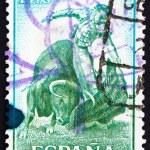 Postage stamp Spain 1960 Fighting with Muleta, Bullfighting — Stock Photo