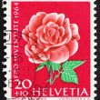 Stock Photo: Postage stamp Switzerland 1964 Rose, Rosa, Flowering Plant