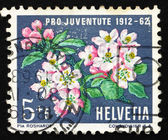Postage stamp Switzerland 1962 Apple Blossoms, Apple Tree, Malus — Stock Photo