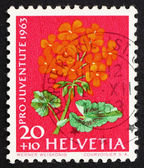Postage stamp Switzerland 1963 Pelargonium, Flowering Plant — Stock Photo