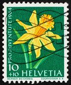 Frimärke schweiz 1964 påsklilja, narcisser, blommande pl — Stockfoto