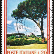 Stock Photo: Postage stamp Italy 1966 UmbrellPine, Stone Pine, Pinus Pinea