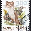 Stock Photo: Postage stamp Norway 1989 Ermine, Stoat, MustelErminea