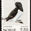 Stock Photo: Postage stamp Norway 1983 Little Auk, Alle Alle, Bird