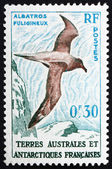 Postage stamp France 1959 Light-mantled Sooty Albatross — Stock Photo