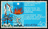 Postage stamp Switzerland 1972 Clean Air, Earth, Water and Fire — Stock Photo