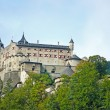 hohenwerfen castle — Stock Photo
