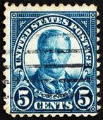 Postage stamp USA 1923 Theodore Roosevelt — Stock Photo