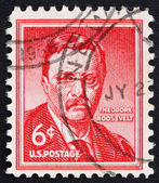 Postage stamp USA 1954 Theodore Roosevelt — Stock Photo