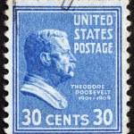 Постер, плакат: Postage stamp USA 1938 Theodore Roosevelt