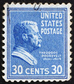 Postage stamp USA 1938 Theodore Roosevelt — Stock Photo