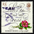 Stok fotoğraf: Postage stamp GB 1996 Rose and lines from poem