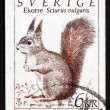 Postage stamp Sweden 1993 Squirrel, Sciurus Vulgaris — Stock Photo