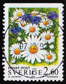 スウェーデン 1993 oxe 目デイジーの花の切手 — ストック写真