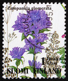 Postage stamp Finland 1993 Clustered Bellflower, Campanula Glome — Stock Photo