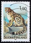 Postage stamp Finland 1989 Snow Leopard, Panthera uncia — Stock Photo