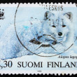 Postage stamp Finland 1993 Arctic Fox - Stock Photo