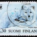 Postage stamp Finland 1993 Arctic Fox — Stock Photo