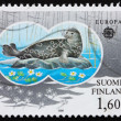 图库照片: Postage stamp Finland 1986 Ringed Seal