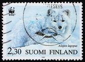 切手フィンランド 1993年ホッキョクギツネ — ストック写真