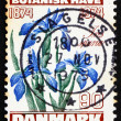 Postage stamp Denmark 1974 Iris Flower — Stock Photo