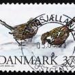 Postage stamp Denmark 1994 House Sparrows - Stock Photo
