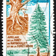 Postage stamp France 1968 Gnarled Trunk and Fir Tree — Stock Photo #9179454