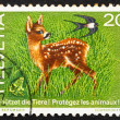 Postage stamp Switzerland 1976 Fawn, Frog and Swallow — Stock Photo
