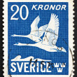 Postage stamp Sweden 1953 Flying Swans — Stock Photo