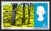 Postage stamp GB 1966 Landscape near Hassock, Sussex — Stock Photo