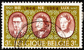 Postage stamp Belgium 1964 Royal rulers in the Benelux — Stock Photo
