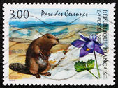 Postage stamp France 1996 Beaver, National Park, Cevennes, Franc — Stock Photo