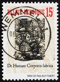 Detalhe de bélgica 1993 selo do livro de anatomia humana — Fotografia Stock