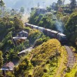 Railroad on Sri Lanka — Stock Photo #10252955