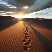 在沙漠徒步旅行 — 图库照片