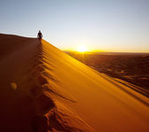 Hike in desert — Stockfoto